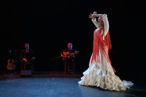 Una de las actuaciones en el Festival Andaluz de Aviñón.
