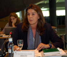 Intervención de Elvira Saint-Gerons ante el Pleno del CGCEE.