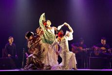 Los miembros del grupo del Centro Flamenco 'Semilla' ofrecieron su espectáculo ante más de 300 personas.