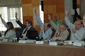 Una de las votaciones durante el II Pleno del VI Mandato del CGCEE.