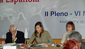 En el centro la presidenta de la Comisión Delegada de Educación del CGCEE, Miriam Herrero, durante el último pleno.