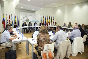 Reunión de la Comisión Delegada del Consello de Comunidades Galegas del 24 de julio que analizó el borrador de decreto.