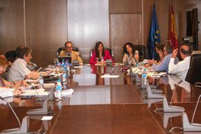 Un momento de la reunión de la Comisión de Educación y Cutura del CGCEE.
