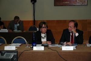 Begoña Serrano interviene ante el pleno del CGCEE.
