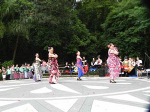 Integrantes del grupo de baile de la Casa de Andalucía de Curitiba en plena actuación.