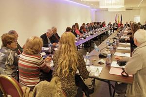 Vista del pleno del Consejo de Comunidades Baleares en el Exterior.