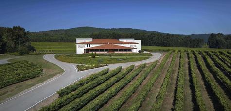 Una vista de la sede de Terras Gauda en O Rosal (Pontevedra).