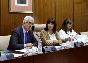 El vicepresidente de la Junta y consejero de la Presidencia y Administración Local, Manuel Jiménez Barrios, en su comparecencia.