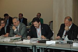 Begoña Serrano, Víctor Bellido, Antonio Rodríguez Miranda y Carles Agustí en el Pleno del CGCEE.