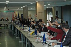 Una de las votaciones en el Pleno del CGCEE.