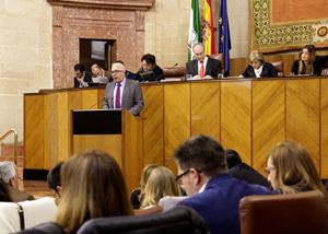 Sánchez Maldonado, durante su intervención en el debate final de la ley celebrado en el Parlamento.