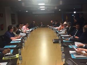 Reunión del pleno del Consejo de Comunidades Asturianas, presidida por el consejero Guillermo Martínez (centro a la izquierda).