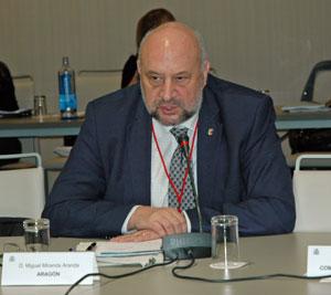 Intervención de Miguel Miranda Aranda ante el pleno del CGCEE que se reunió en Madrid los días 30 y 31 de enero.