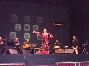 Un momento del espectáculo flamenco.
