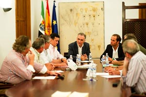 Juan Parejo, al fondo, en la reunión con los representantes de las casas extremeñas.