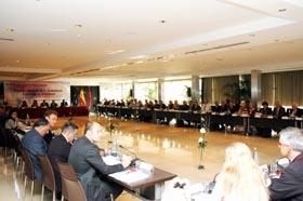 Reunión del pleno del CGCEE.