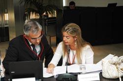 Victoria Cristóbal en el pleno del CGCEE junto al representante de Castilla y León.
