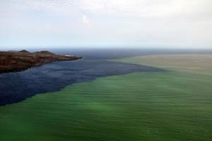 Imagen facilitada por el Gobierno de Canarias, que corresponden a vistas aéreas de la erupción submarina de El Hierro.