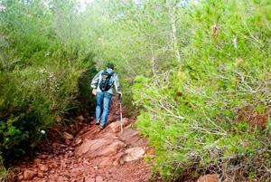 La excursión por 'Sa Bassa verde'.