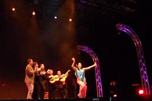Un actuación del festival.
