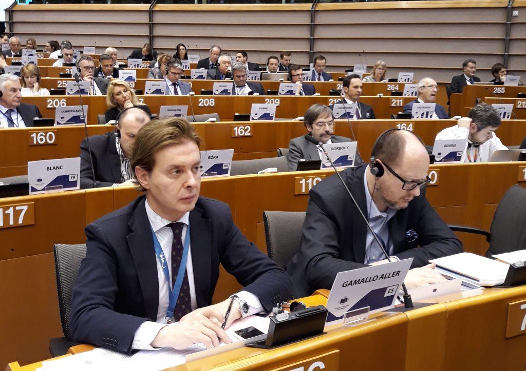 Jesús Gamallo, en la reunión plenaria del Comité Europeo de las Regiones.
