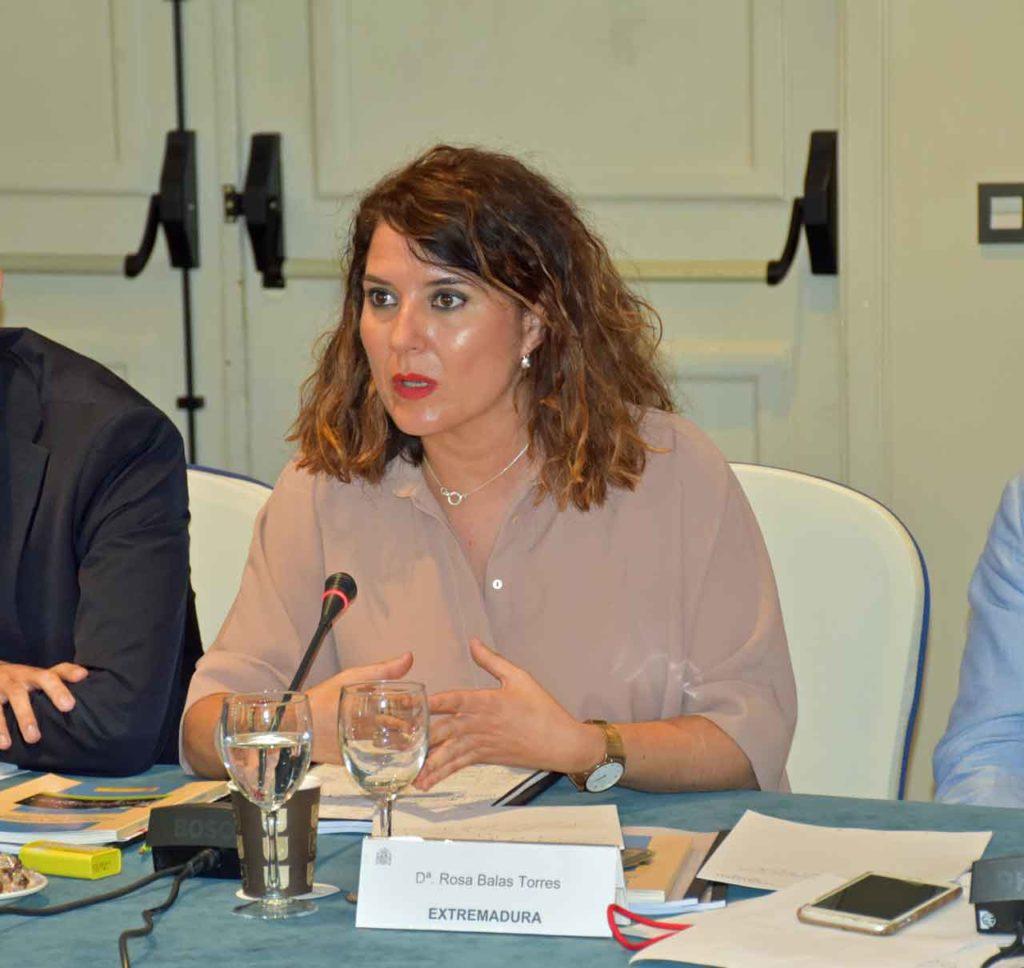 Intervención de Rosa Balas ante el Pleno del CGCEE.