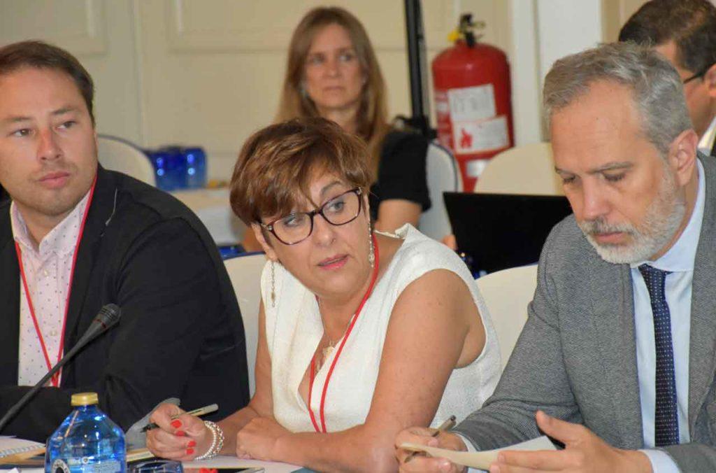 Begoña Serrano en el II Pleno del VII Mandato del CGCEE.