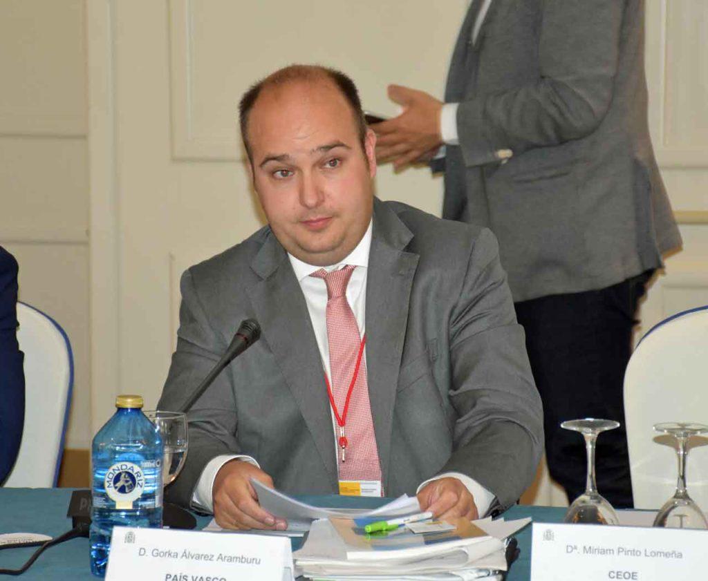 Gorka Álvarez Aramburu en el II Pleno del VII Mandato del CGCEE.