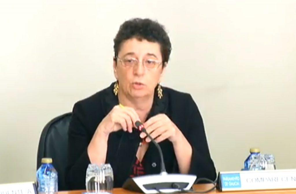 Rosario Álvarez, en un momento de su comparecencia en el Parlamento.