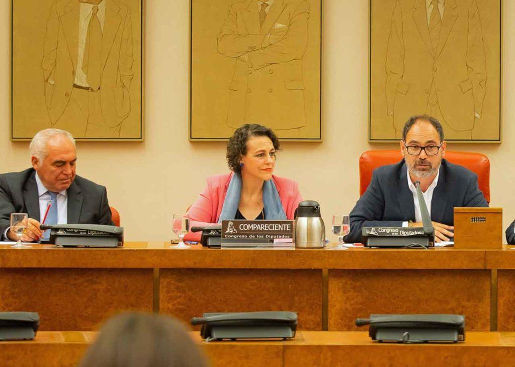 Magdalena Valerio compareció ante la Comisión de Trabajo, Migraciones y Seguridad Social del Congreso el pasado 10 de julio.
