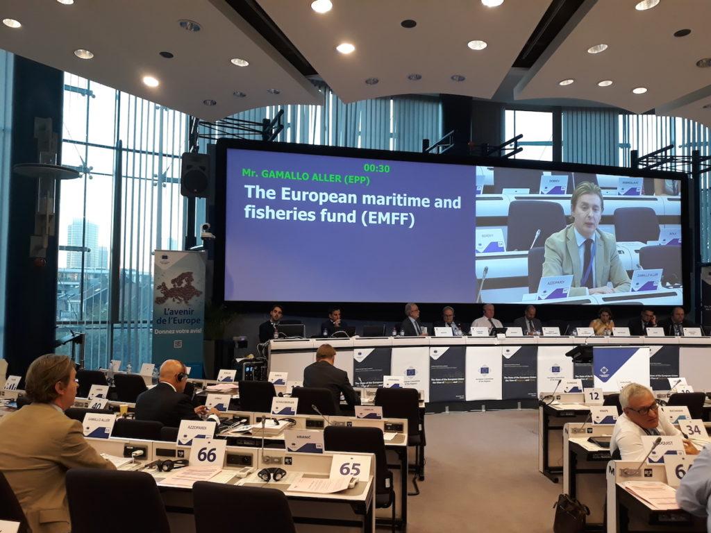 El director xeral de Relacións Exteriores e coa UE, Jesús Gamallo (interviniendo en la pantalla), participó en la 131ª sesión plenaria del Comité Europeo de las Regiones.