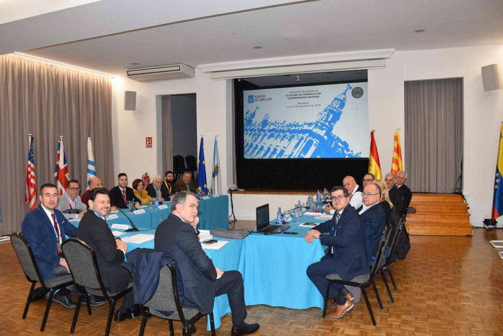 Los miembros de la Comisión Delegada del Consello de Comunidades Galegas, en el inicio de la reunión en la que se aprobó la declaración institucional.