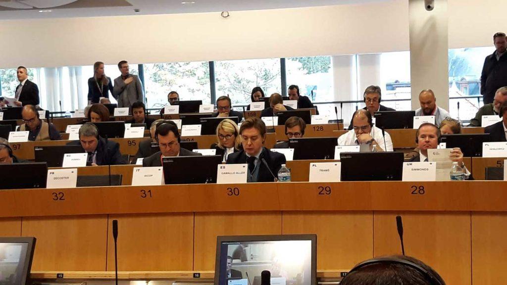 Jesús Gamallo, en la sesión de la Comisión de Ciudadanía, Gobernanza y Asuntos Institucionales y Exteriores del Comité Europeo y de las Regiones (CdR).
