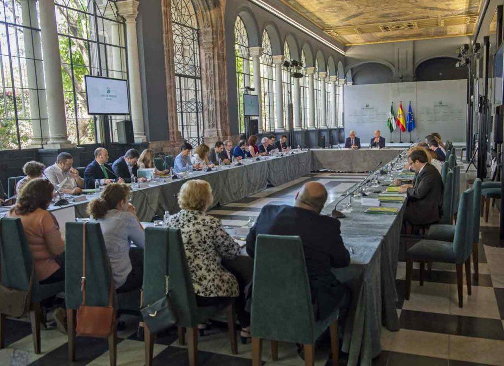 Reunión del IX Pleno del Consejo de Comunidades Andaluzas celebrada en junio de 2018.