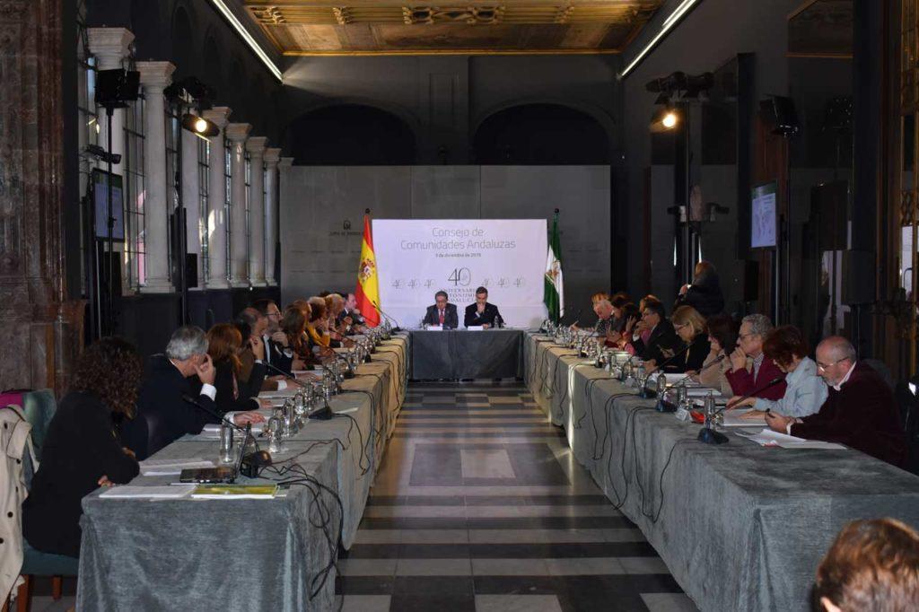 Una vista del Pleno del Consejo de Comunidades Andaluzas celebrado en el Salón de Espejos del Palacio de San Telmo, en Sevilla.