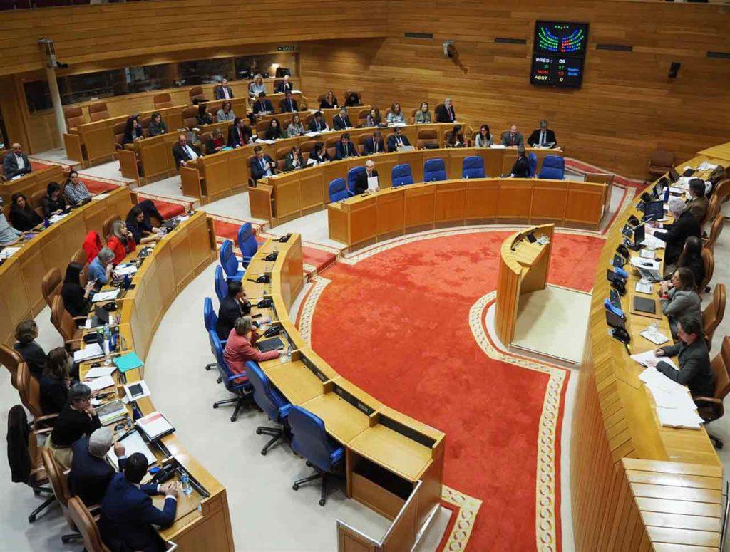 Pleno del Parlamento de Galicia del miércoles 29 de enero.
