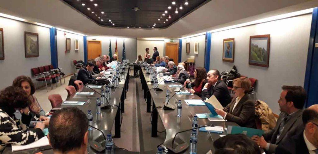 Un momento de la sesión plenaria del Consejo de Comunidades Asturianas.