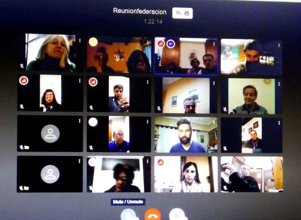 Un momento de la tercera videoconferencia organizada por la Federacion.
