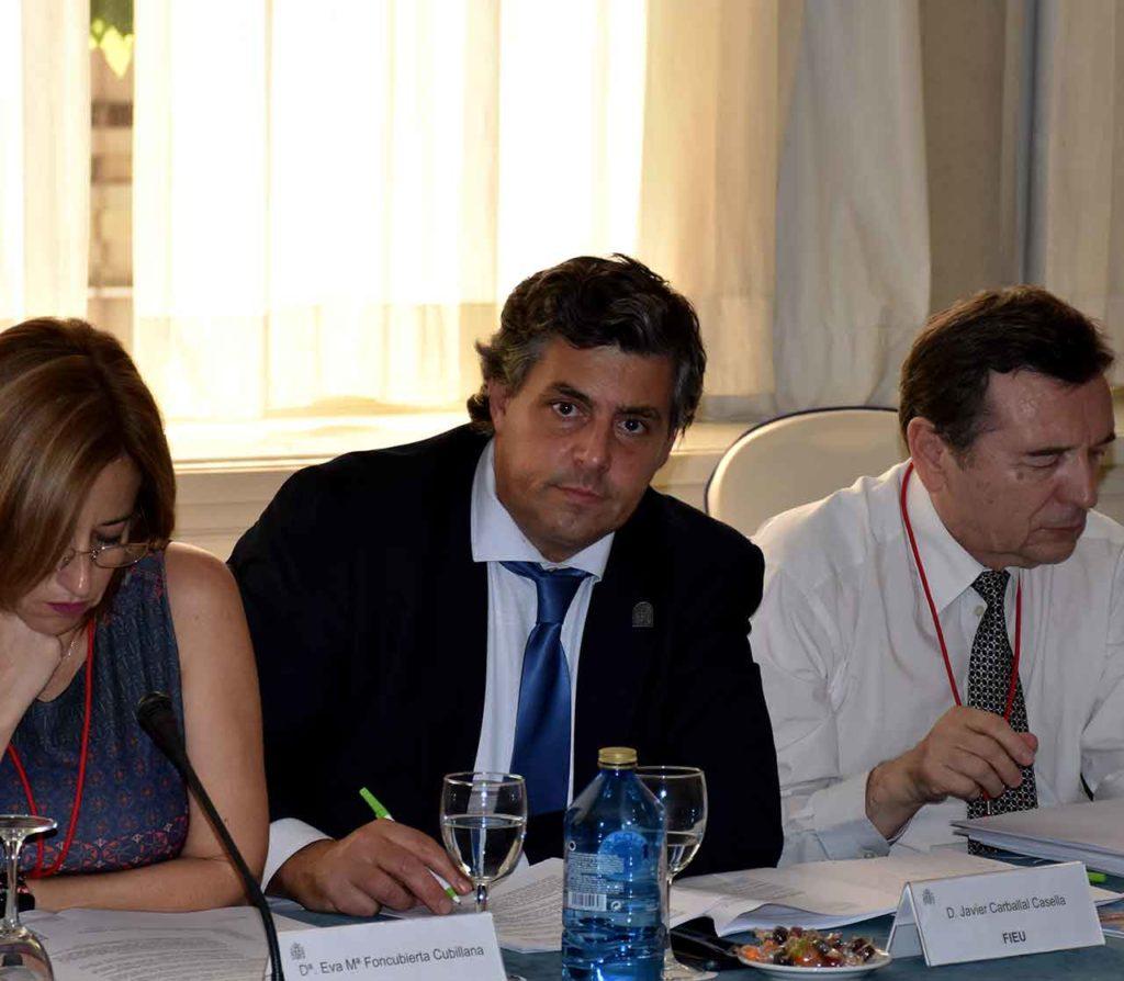 Javier Carballal en el pleno del CGCEE celebrado en Madrid en junio de 2018.