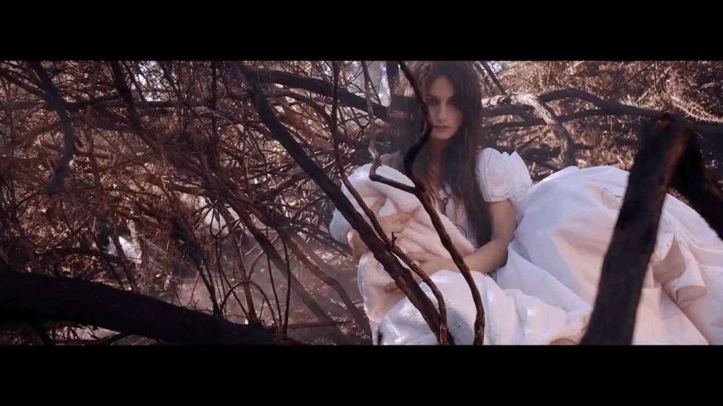 'Araña' de Yolanda Castaño.