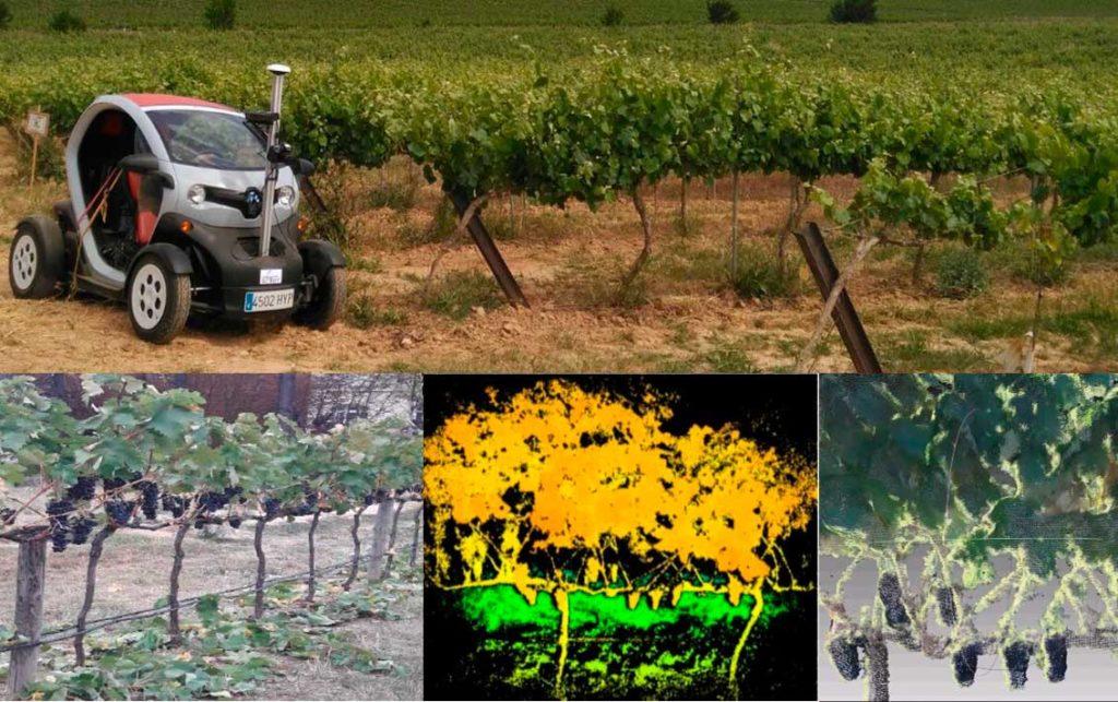 El robot del CSIC por los viñedos de Terras Gauda e imágenes captadas en su recorrido.