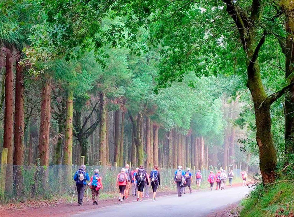 Los participantes recorrerán 100 kilómetros del Camino de Santiago en diferentes etapas.
