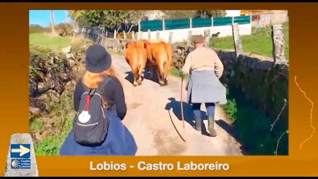 Imagen de los nuevos contenidos en GaliciaAberta.