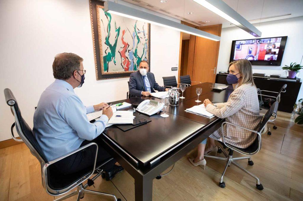 Núñez Feijóo presidió la reunión por videoconferencia del comité clínico de expertos.